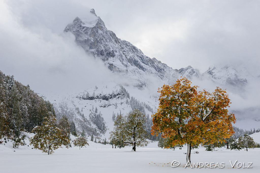 Landschaft511.jpg