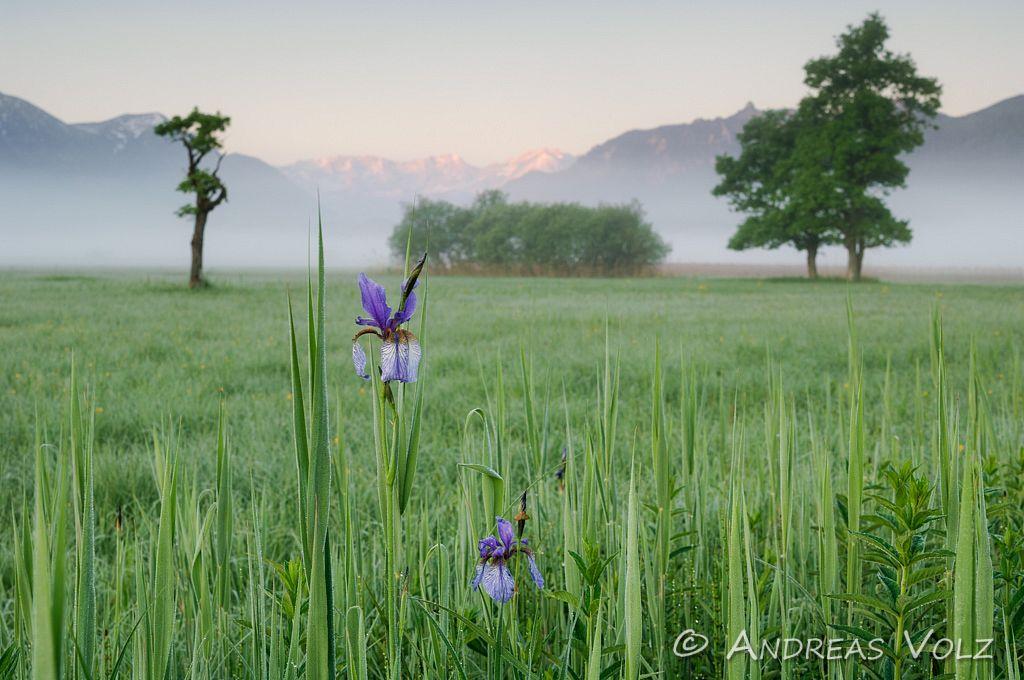 Landschaft336.jpg