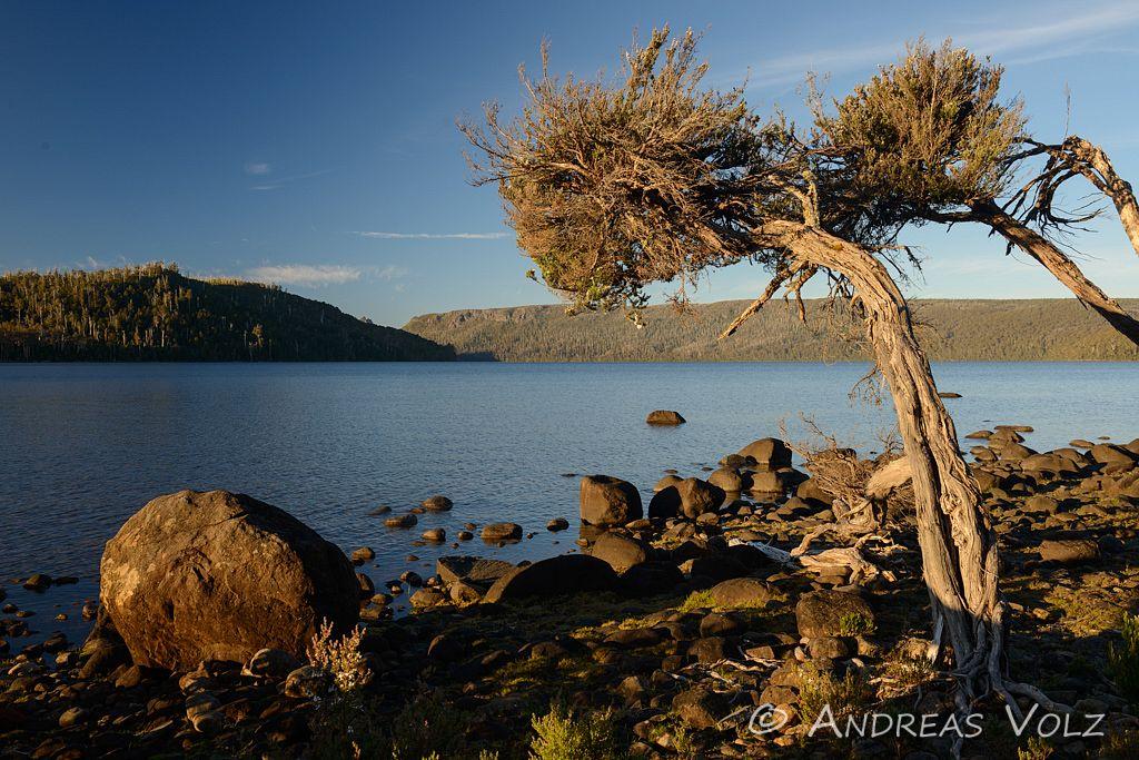 Landschaft711.jpg
