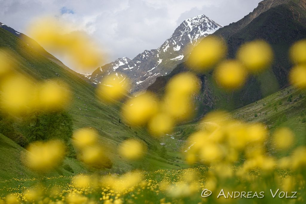 Landschaft951.jpg